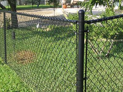 Black chain link fence for the backyard keeps the pets in.