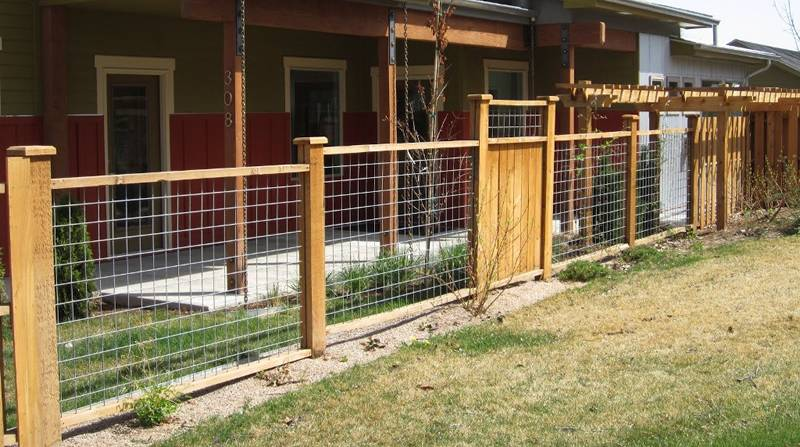 4 ft. hog panel fencing with cedar frame is very attractive.